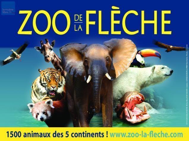 Zoo de la fl che 72 for Chambre zoo de la fleche